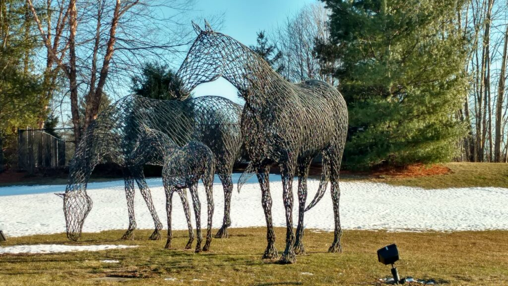 Metal Horses in Brookfield
